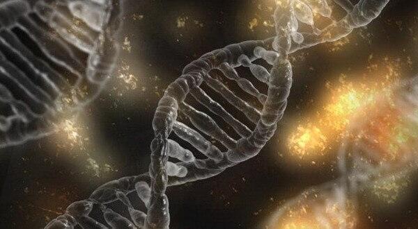 Preguntas de genética. Examen resuelto selectividad.